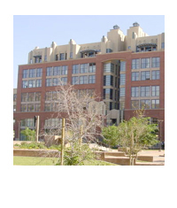 Orchidhouse Lofts- Downtown Tempe Lofts - Condo